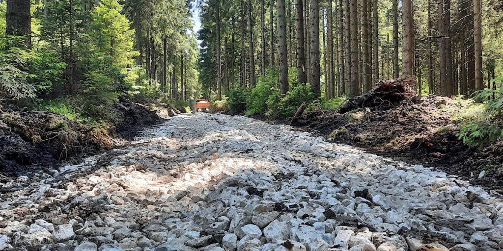 Waldwegebau zum Moorgebiet